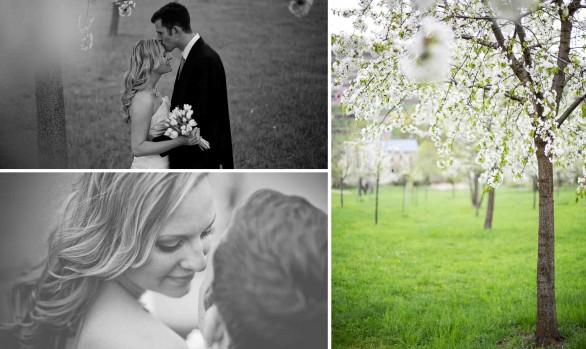 Hochzeit Schloß Wackerbarth Fotograf Dresden