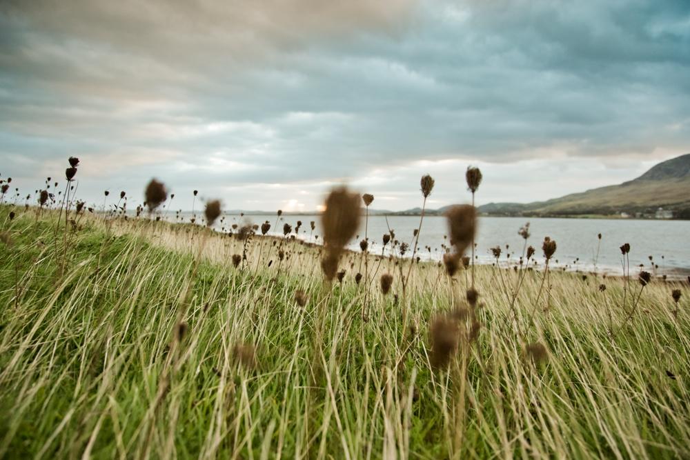 Irland_Fotograf_SusannStaedter-1-45