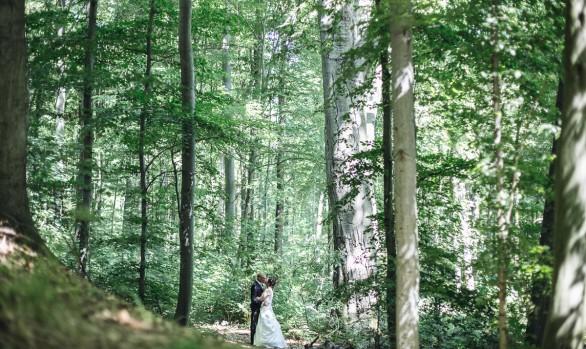 Hochzeitsfotograf_Dresden